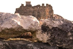 Неаполь скифский в Симферополе ©Фото со страницы в инстаграм www.instagram.com/fees_tashka_/