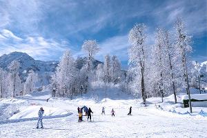 Горный курорт «Роза Хутор» ©Фото Екатерины Лызловой, Юга.ру