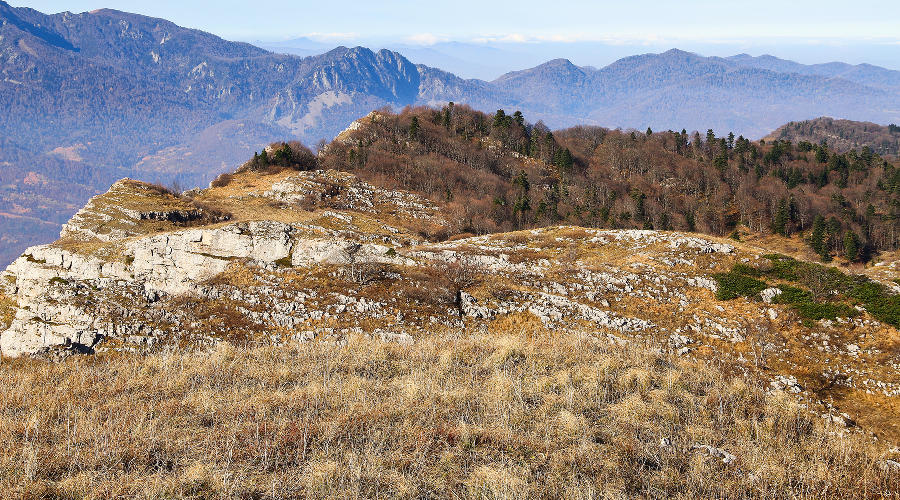 плато Черногор