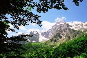 ©Фото со страницы во вконтакте vk.com/kavzapoved