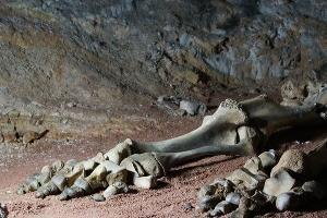Пещера Эмине-Баир-Коба ©Фото со страницы в инстаграм www.instagram.com/irinasmiiile/