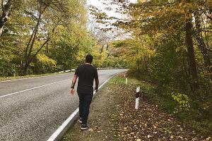 Дорога в сторону села Фанагорийское. Горячий Ключ ©Фото Заиры Залексон, Юга.ру