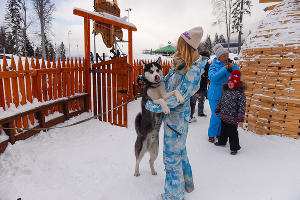 Хаски-центр на курорте «Роза Хутор», Сочи ©Фото Елены Синеок, Юга.ру